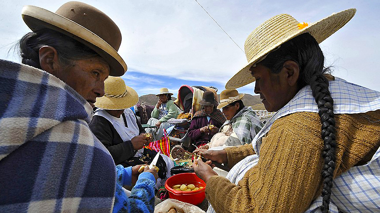 Peruvian government is working to keep its 47 indigenous languages alive