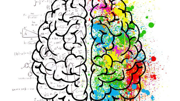 The more languages you speak, the easier it is for the brain to learn more